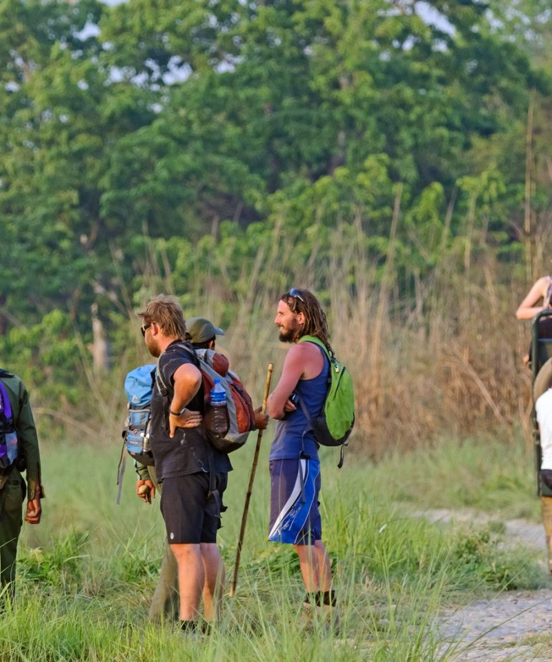 Chitwan National Park Tour , Chitwan Jungle Safari